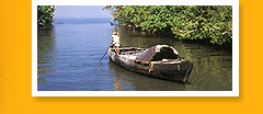 Kerala & South India Tourism