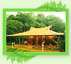 Hotel Rain Country Resort, Wayanad