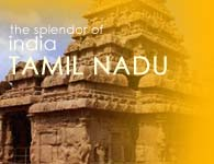 Splendor of Tamilnadu