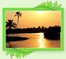 Alleppey Backwaters - Kerala
