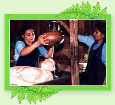 Dhara - Kerala  Ayurveda