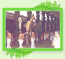 Guruvayoor Temple - Kerala