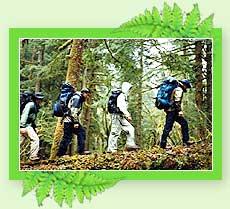 Hiking - Kerala Adventure Travel