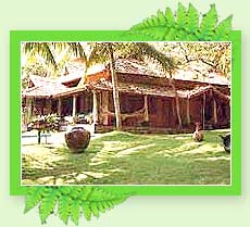 Somatheeram Resort - Kerala