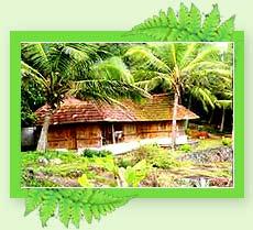 Hotel Niraamaya Retreat
