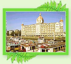 Taj Mahal Hotel - Mumbai